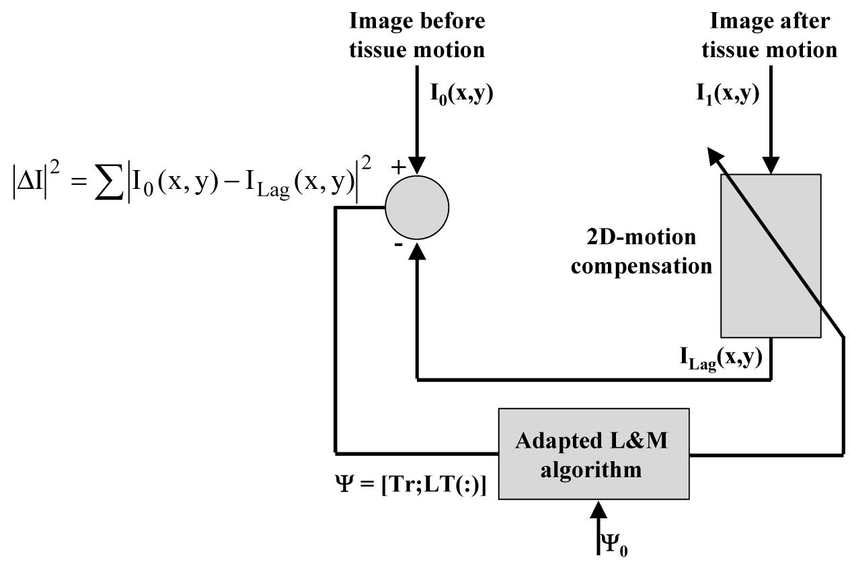Block-diagram showing the implementation of the Lagrangian