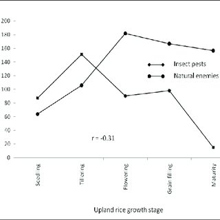 (PDF) Aboveground Arthropod Composition, Abundance and
