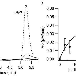 pGpG hydrolytic activity of (A) PA4781, (B) PA4781 E314A