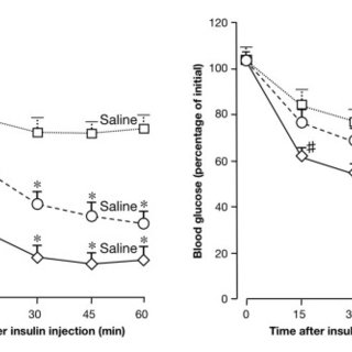 Effects of RBP4 on insulin sensitivity. Insulin-tolerance