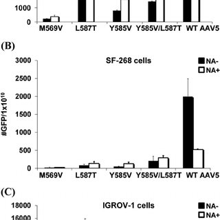 Neutralization of transduction by WT AAV5 and SIA binding