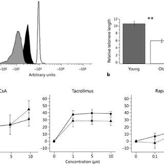 (PDF) Effect of Different Immunosuppressive Drugs on