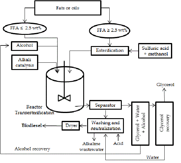 Process diagram of biodiesel production by alkali catalyst.