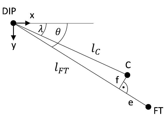 A scheme showing the displacement between FT (fingertip