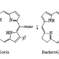 Schematic of p-p* transitions (responsible for the Soret