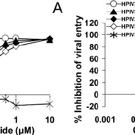 Fusion inhibition by shortened HeV F- and HPIV3 F-derived