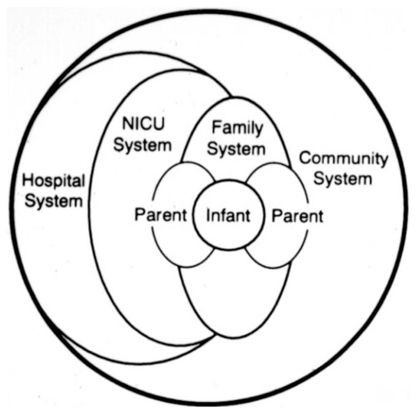 The Newborn Individualized Developmental Care and