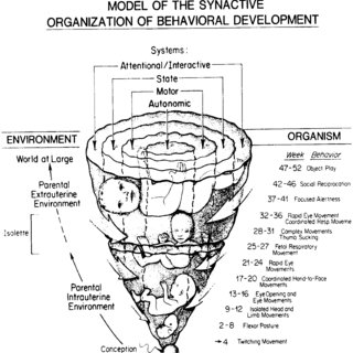 Assessment of Preterm Infant Behavior (APIB) score sheet