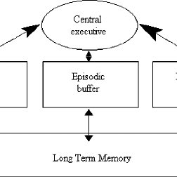 A modified schematic diagram of the revised working memory