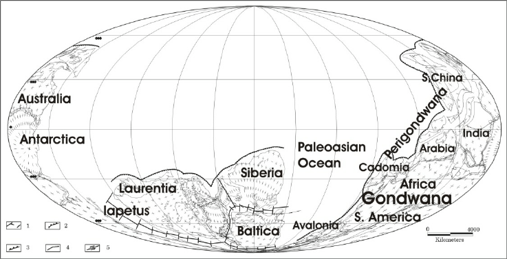 Plate tectonic global map of Early Cambrian (plates