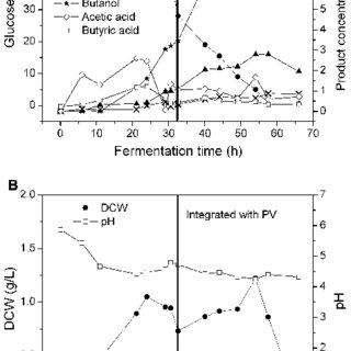 (PDF) Acetone-butanol-ethanol (ABE) fermentation using C