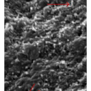 FTIR spectra of polyamide fibres obtained at 15kV