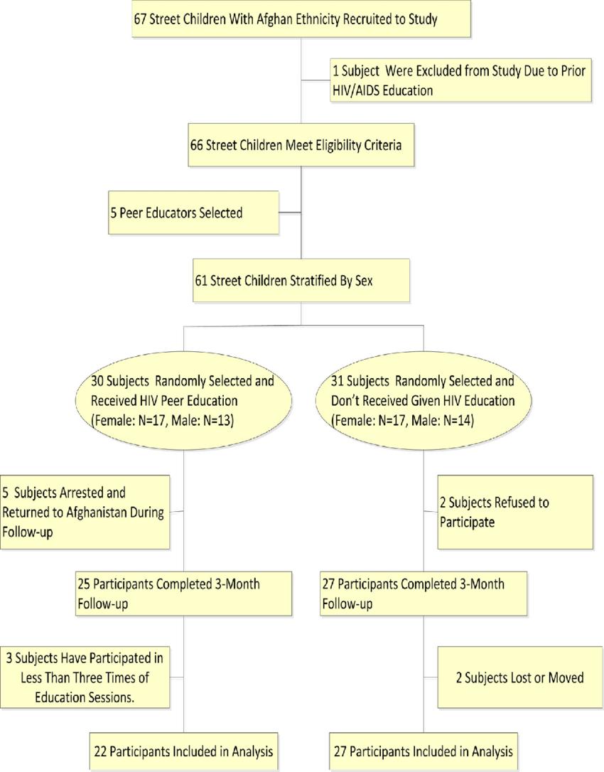 medium resolution of hiv aids and peer education flow diagram