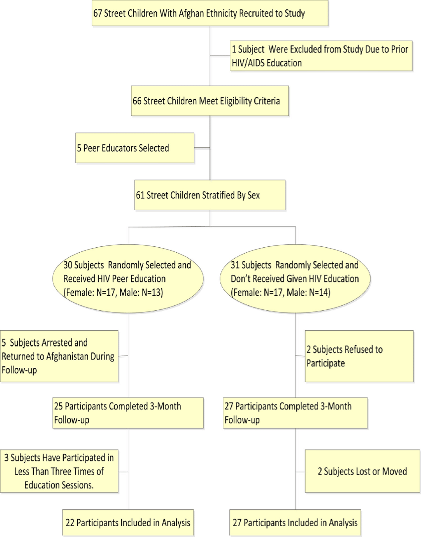 hight resolution of hiv aids and peer education flow diagram