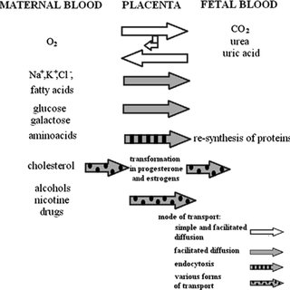 Characteristics of biological materials normally selected