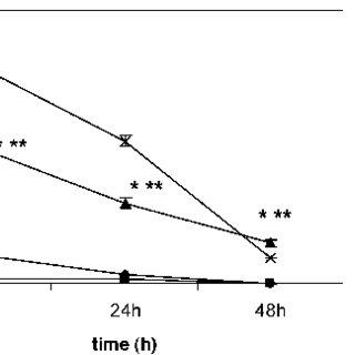 Gamma-glutamyltransferase (GGT) enzyme activity (mU/10 6