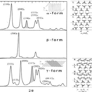Shear-induced transcrystallization of PP in glass fiber/PP