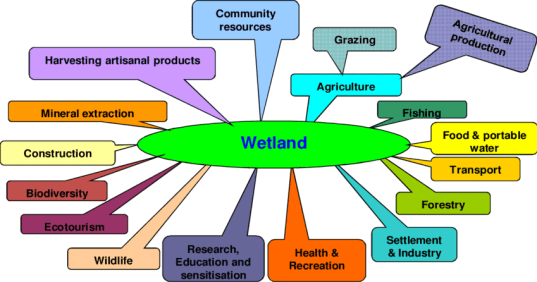Wetland a resource with different interests with conflicting uses ...