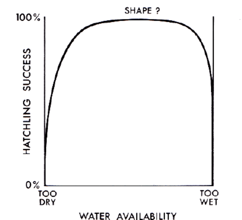 Schematic representation of the possible relationship