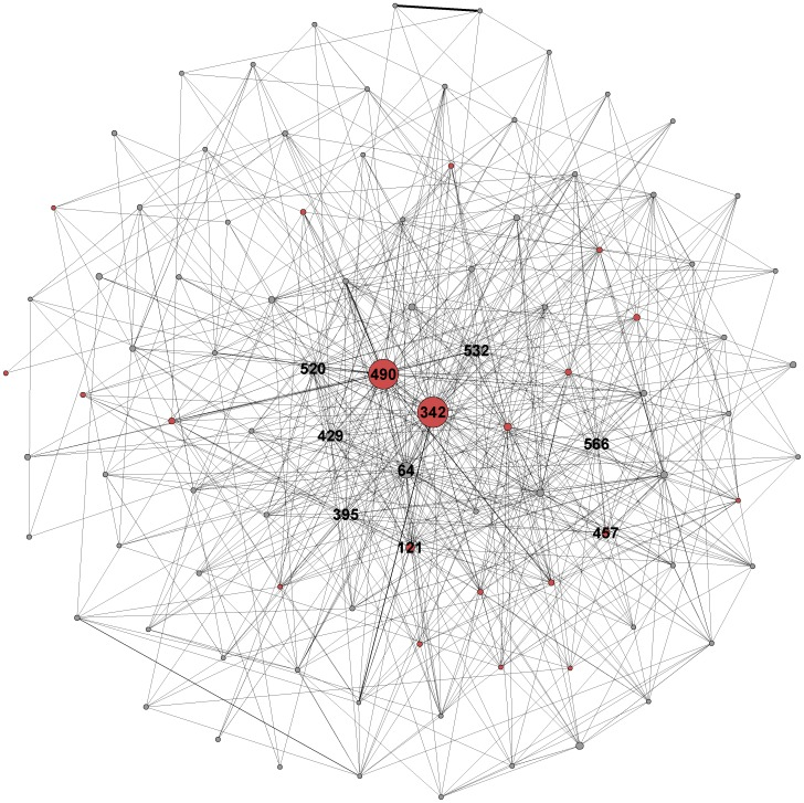 Full ostrich movement network visualization with the least