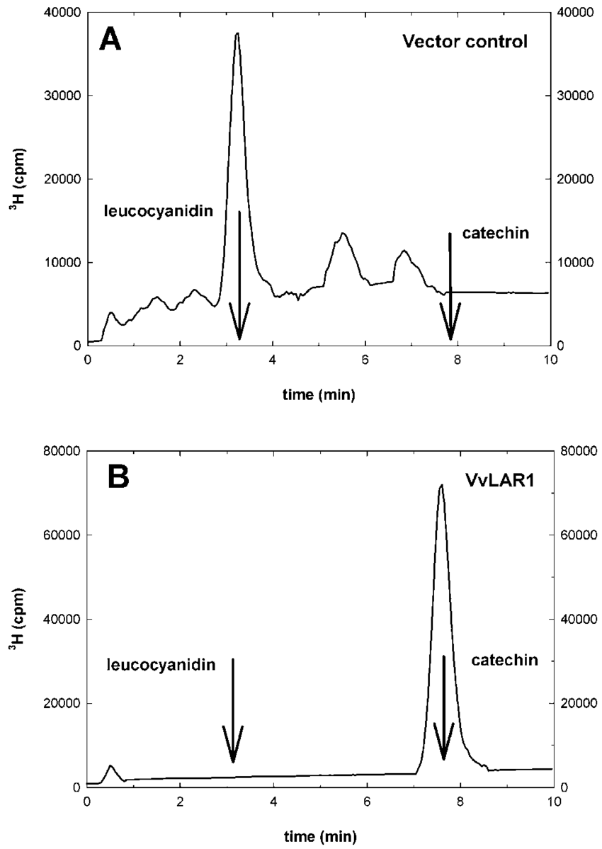 hight resolution of enzyme activity of recombinant grapevine lar vvlar1 hplc download scientific diagram