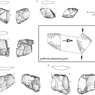 (PDF) The lithic technology of Holley Shelter, KwaZulu