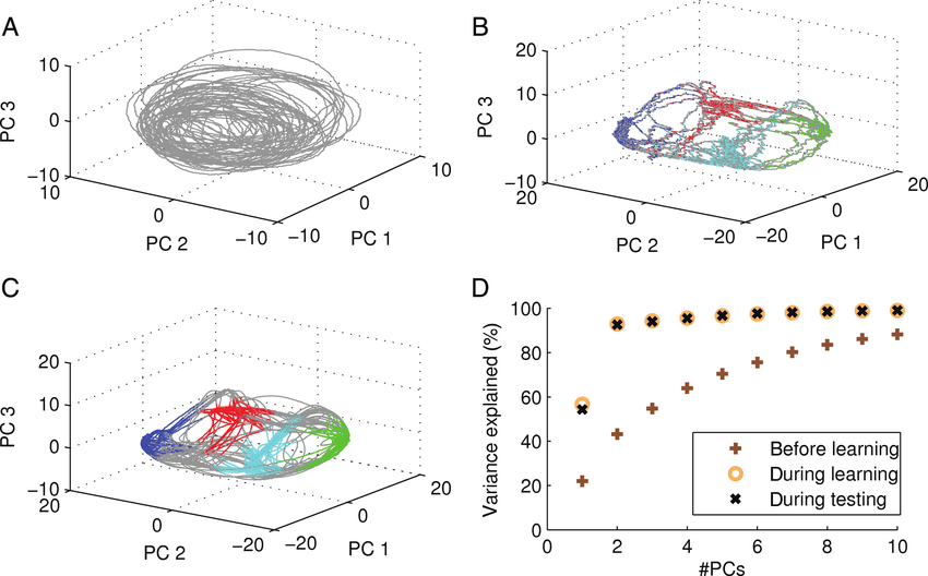Working memory induce low-dimensional network dynamics. (A