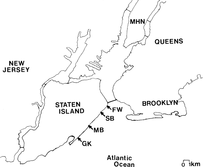 Map of the New York City-New Jersey area showing location