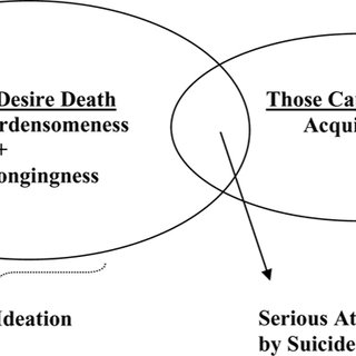 (PDF) Application of an Interpersonal-Psychological Model