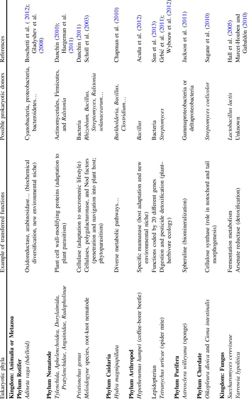 Example of prokaryote and eukaryote