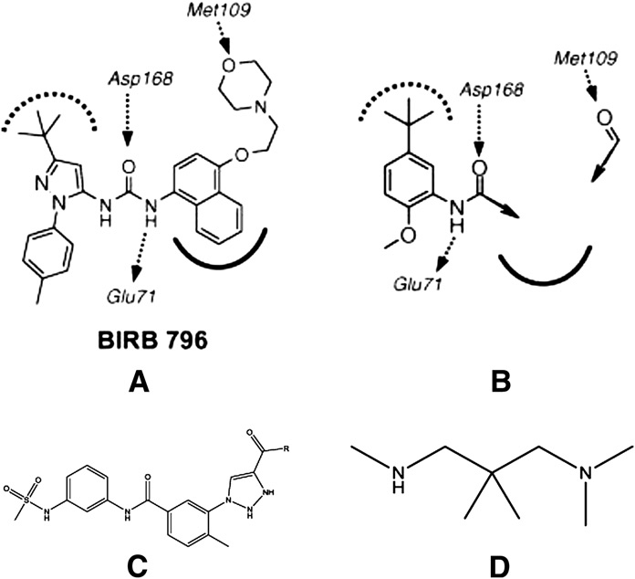 Design strategy for inhibitors of p38 MAPK. (A) Key