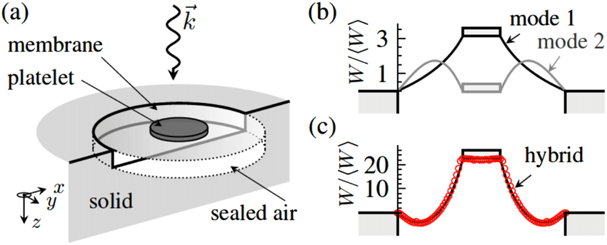 (a) Schematic illustration of the unit cell's component