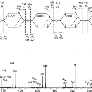 Negative-ion ESI-CID MS/MS product ion spectra of