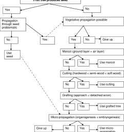 a decision tree based on logic processes that guide the selection of a propagation method  [ 850 x 958 Pixel ]