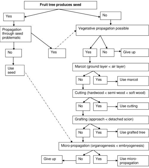 small resolution of a decision tree based on logic processes that guide the selection of a propagation method
