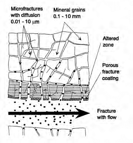 3.1 Schematic Illustration of the transport of potentially