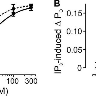 (PDF) Type 1 IP3 receptors activate BKC3 channels via