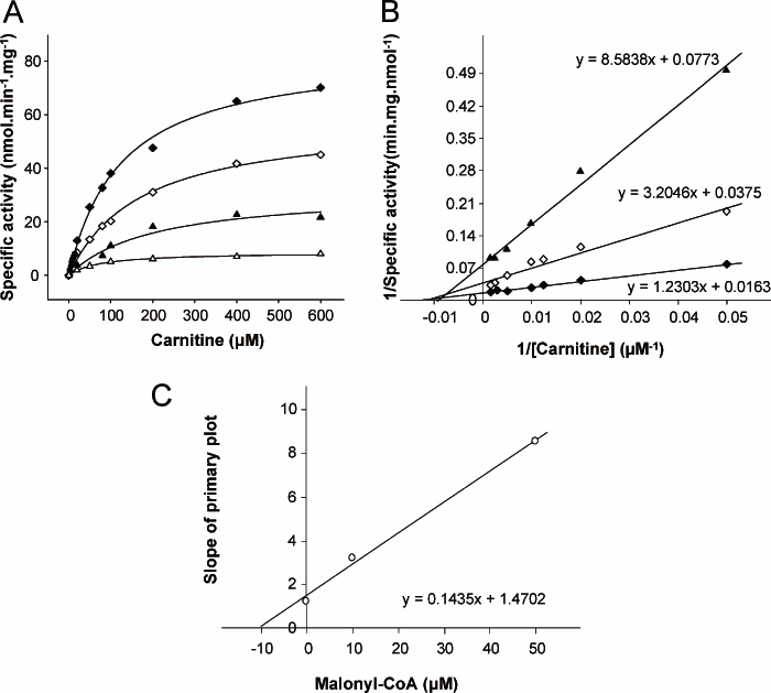 Kinetic analysis of wild type CPT1A for carnitine as a