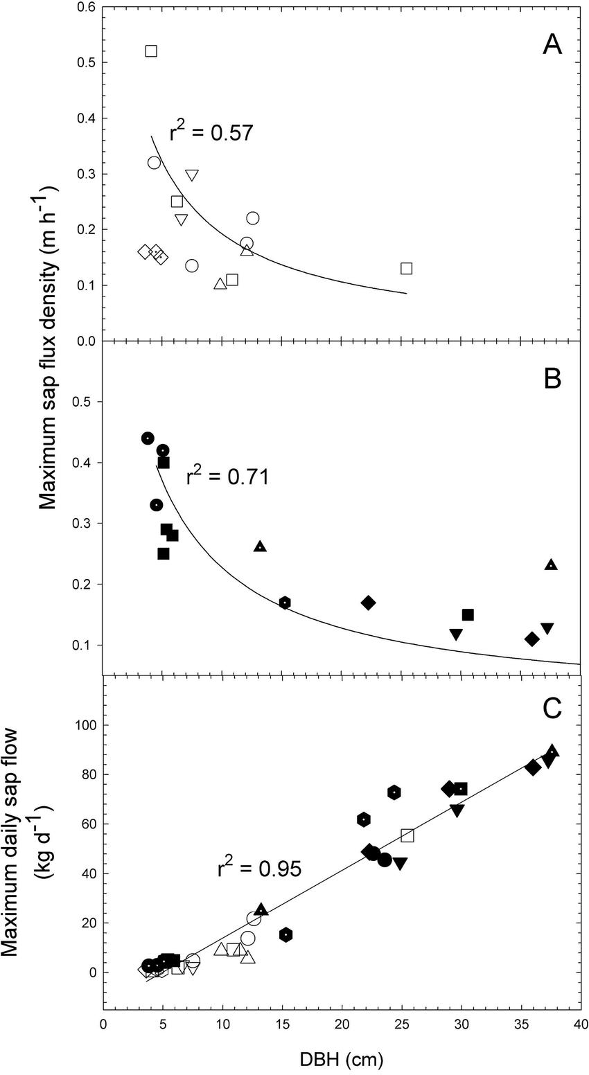 medium resolution of a b maximum sap flux density and c maximum daily sap flow for lianas download scientific diagram