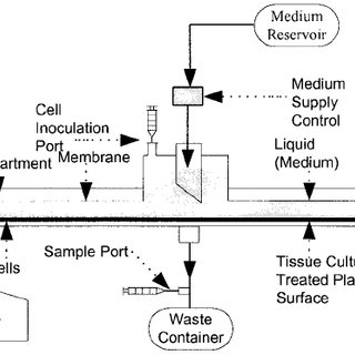 Schematic diagram of the Aastrom perfusion bioreactor