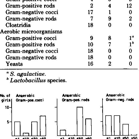(PDF) Periurethral anaerobic microflora of healthy girls
