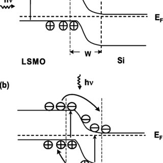 Schematic circuits of ( a ) front and ( b ) side