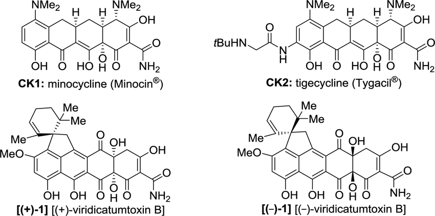Molecular structure of tetracycline drugs monocycline (CK1