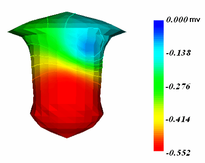 realistic heart diagram massey ferguson 165 parts the and torso geometry model epicardial download scientific
