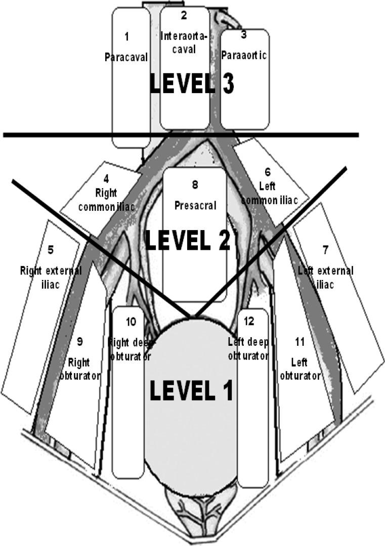 anatomical regions diagram
