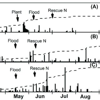 (PDF) Early-Season Soil Waterlogging and N Fertilizer