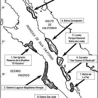 (PDF) Conservación y manejo de los manglares de la