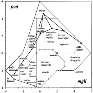 Median composition (dots) of mica varieties in terms of