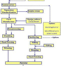 cheese production flow diagram adopted from dairy processing handbook pp290 tetra [ 850 x 1072 Pixel ]