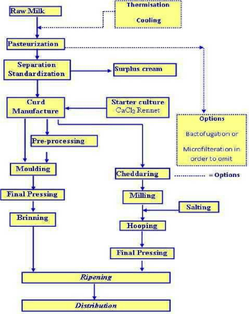 small resolution of cheese production flow diagram adopted from dairy processing handbook pp290 tetra
